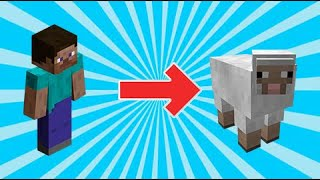 How to morph into anything with commands | Minecraft Bedrock