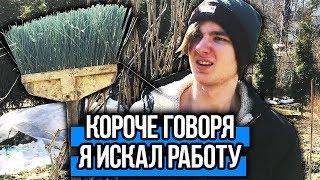 - КОРОЧЕ ГОВОРЯ, Я ИСКАЛ РАБОТУ
