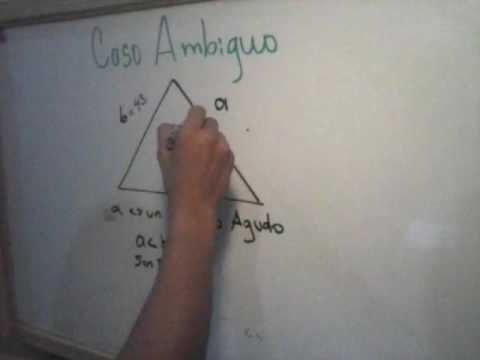 DEFINICIÓN DE CASO AMBIGUO