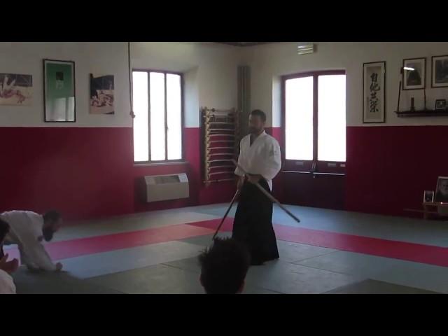 Francesco Corallini Sensei - Henka no tachi - (1st kumi tachi - variation no. 2) - Italy, 2017.