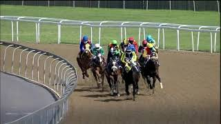 Vidéo de la course PMU MAIDEN PLATE R85