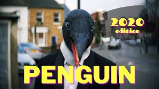 'PENGUIN' (2020 edition-Official Video) by Maurizio Minardi