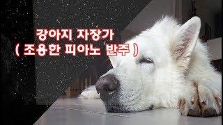 강아지 자장가, 피아노 반주, 조용한 음악, 강아지 음악, 강아지 소리...