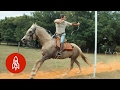 A Modern Day Warrior: Mastering Mounted Archery