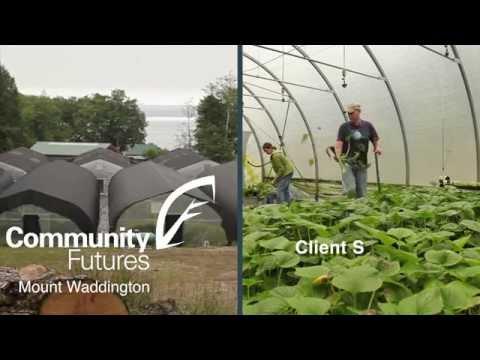 Malcolm Island Growers Wasabi Farm
