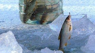 Перша рибалка на льоду 2018. НАРЕШТІ! Зимова риболовля. Ловля на живця для жерлиц на щуку.