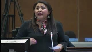 Sesión 490 del Pleno (19-12-2017)