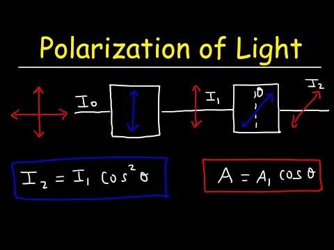 Polarization of light Problems, Malus Law - Intensity & Amplitude - Physics