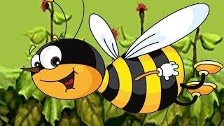 Из жизни насекомых. Глазами пчелы.Вкусные картинки