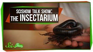 SciShow Talk Show: The Insectarium with Olivia Gordon