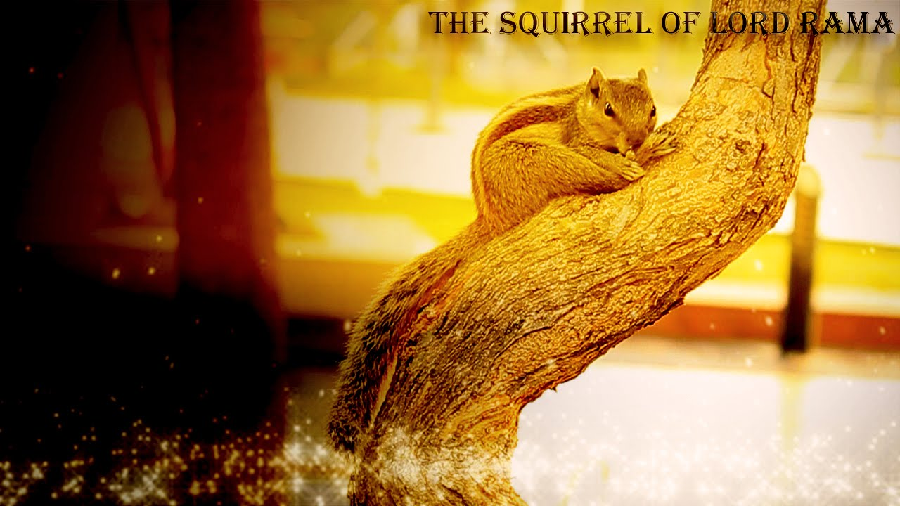 Image result for Image of Lord Rama fondling the squirrel