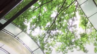 ラッセンブリ広尾 PV ラッセン 検索動画 28