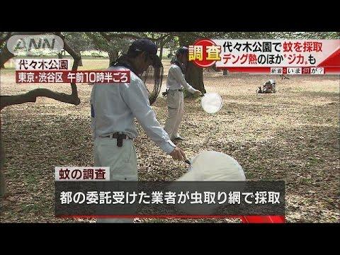 流行防げ!デング熱、ジカウイルス・・・都が蚊の調査(16/04/18)