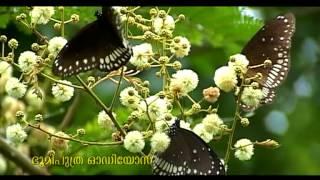 shahaban masa yamangal....malayalam album RAHANA / K G MARKOS