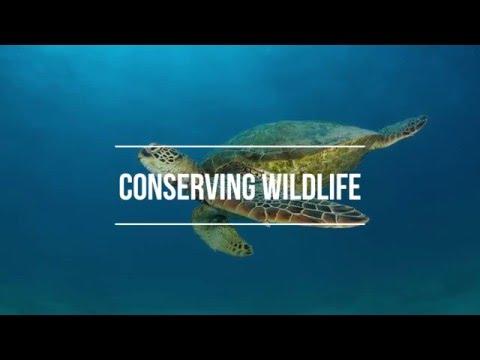 Biodiversity Advocacy Campaign