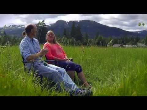 Holistic Massage Retreat in Norway