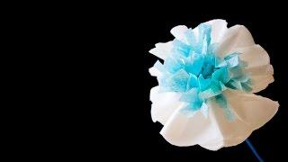 Бумажные цветы своими руками. Paper flowers(В видео показано как сделать бумажные цветы своими руками из салфетки (или туалетной бумаги). Теперь вы..., 2015-04-01T09:15:12.000Z)