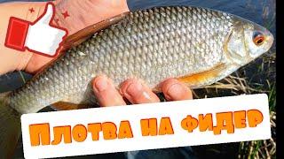 Рыбалка на озере. Ловля плотвы