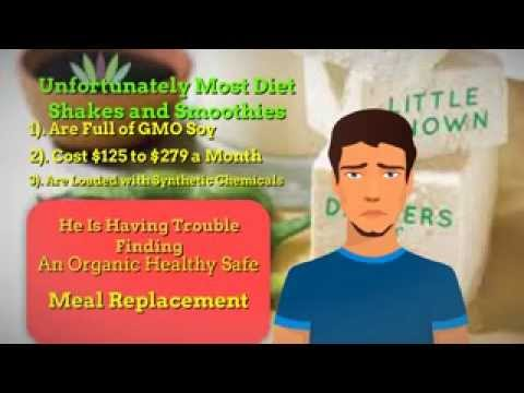 Organic Meal Replacement Nikken Vital Balance