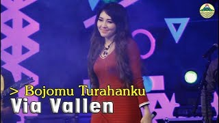 Gambar cover Via Vallen - Bojomu Turahanku   |   Official Video