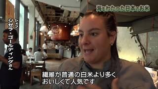 BS日テレ『海をわたった日本のお米 ~シンガポールに販路を求めて~』