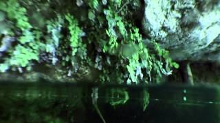 Водная жизнь - [9_26] Оболочка воды