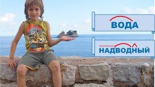 Корень слова.  Русский язык 2 класс.