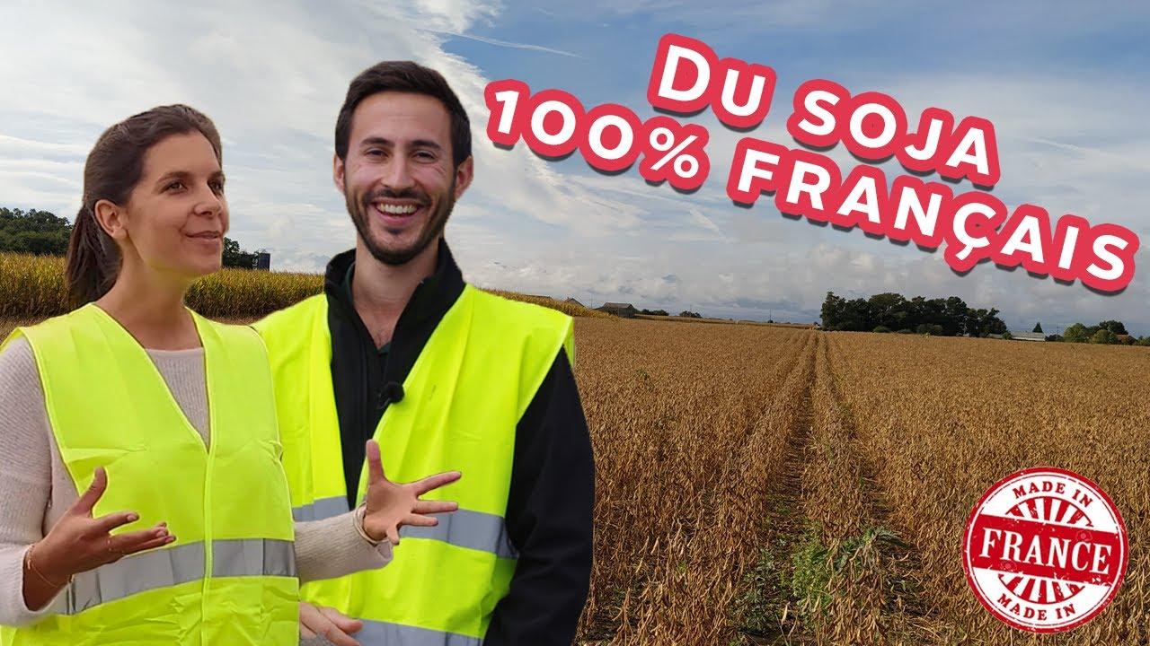 À la découverte de la culture du soja en France : le stockage ! 8/9
