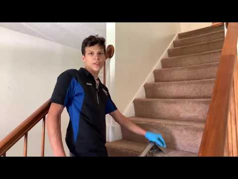 My Son Cleaning Dirty Carpets w/ Urine & Heavy Dog Soil | ASMR Carpet Cleaning | Oddly Satisfying