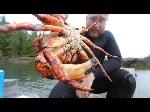 The BEST Damn Crab Ive EVER eaten