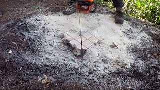 How To Make A Tree Stump Disappear In Just A Few Minutes