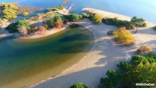 Dimanche 13 nov sur le bassin, Arès plage de Saint Brice