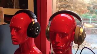 Focal Clear Headphones at Music To My Ear