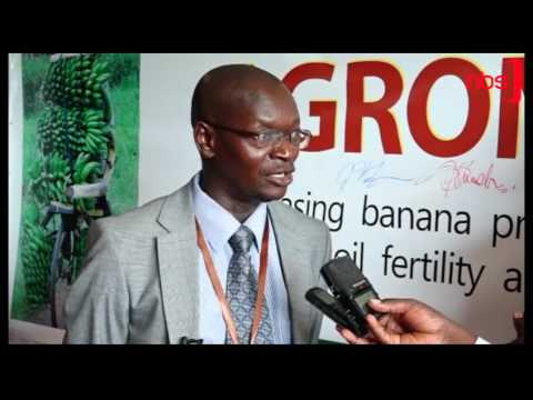 NARO to Engage Farmers on Good Agronomic Practices