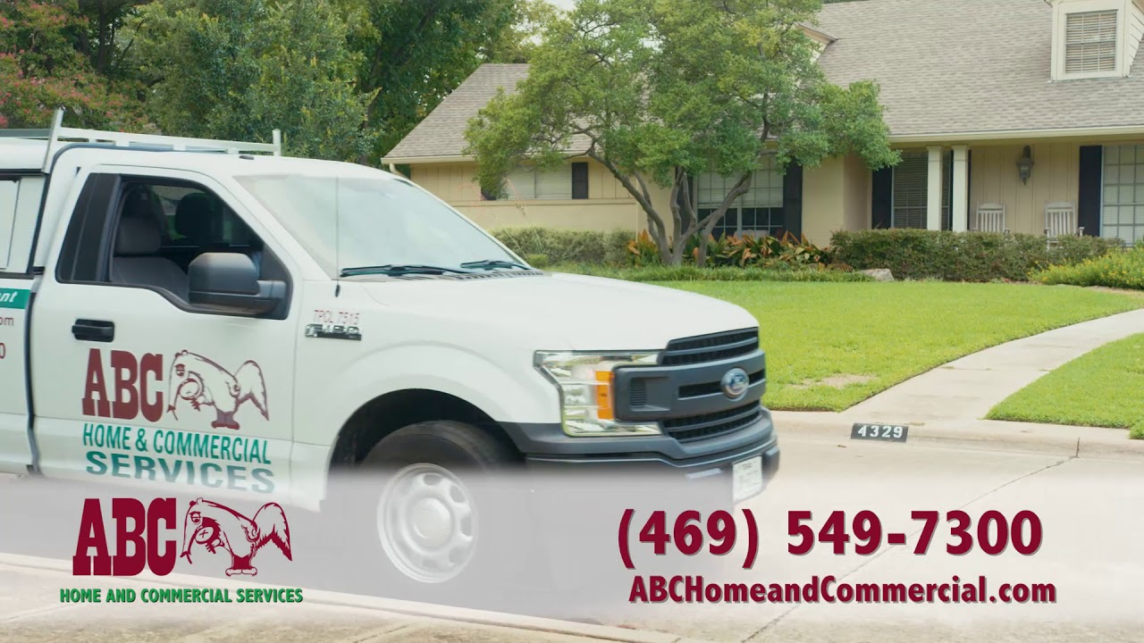 Abc Home And Commercial Services Rodent Services