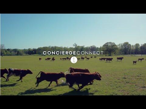 Concierge Connect 2016 - Ep 05