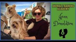 Jean Donaldson - Academy for dog trainers