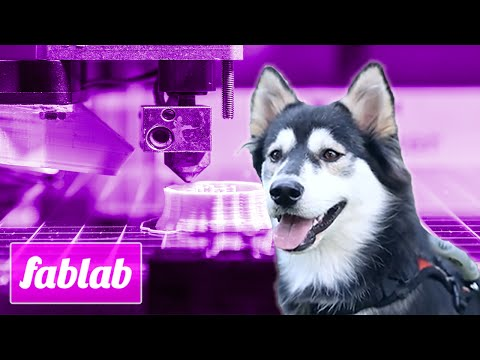 Going To The Dogs: FabLab TV Ep. 101