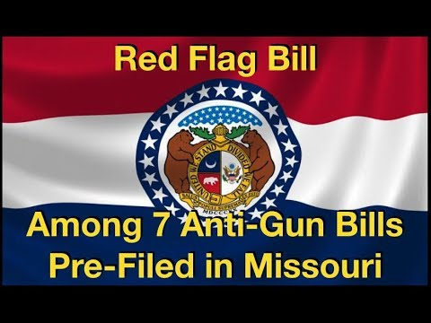 Red Flag Bill Among 7 Anti-Gun Bills Submitted in Missouri