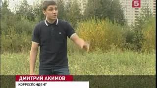 В Петербурге подростковая шалость едва не закончил