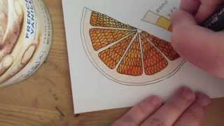 Inking and Coloring an Orange Slice