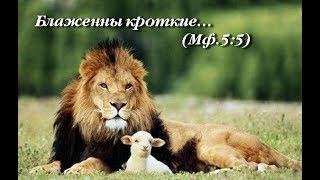 Какую землю наследуют кроткие? Заповеди Блаженства. Беседа 4.