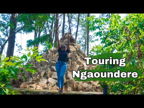 Discover Ngaoundere Cameroon |Touristic sites in Ngaoundere | Bois de madoc, Le Lamidat ????