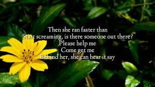 Lirik lagu Alan Walker K1 Emelie Hollow Lily