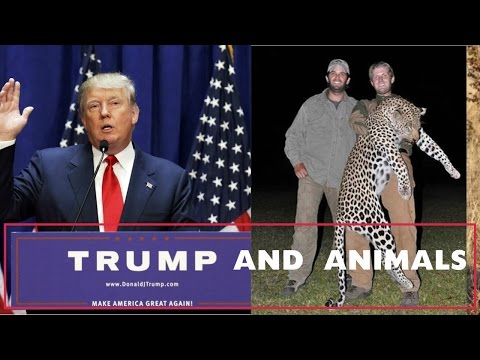 Donald Trump and Animal Welfare