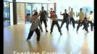 Tai Chi 太極拳 Seminar 24 Short Form