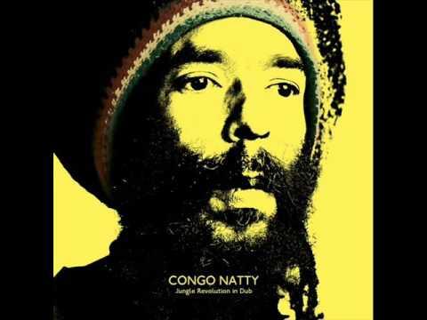 Congo Natty - Revolution In Dub (DJ Madd Remix)