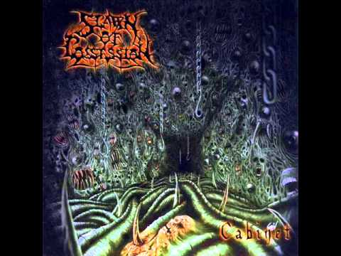 Spawn Of Possession - A Presence Inexplicable