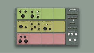 Klevgrand Modley - Multi-FX 딜레이