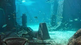 Атлантида. Тайна исчезнувшей цивилизации,Фантастические истории .